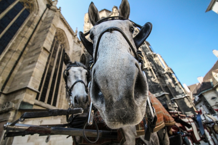 Outside Stephansdom, Vienna | How Far From Home